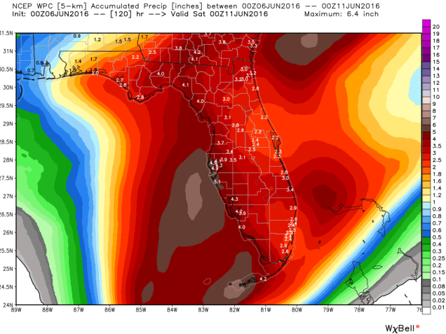 wpc_total_precip_florida_20